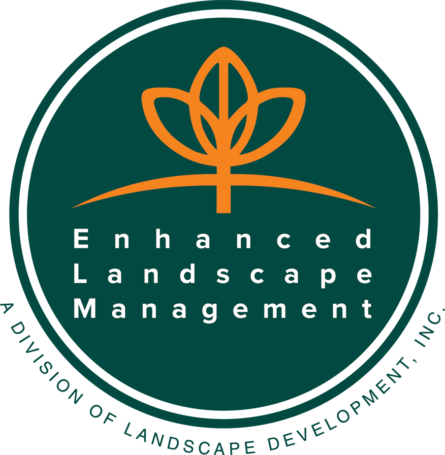 ELM – Logo – v2@0,75x