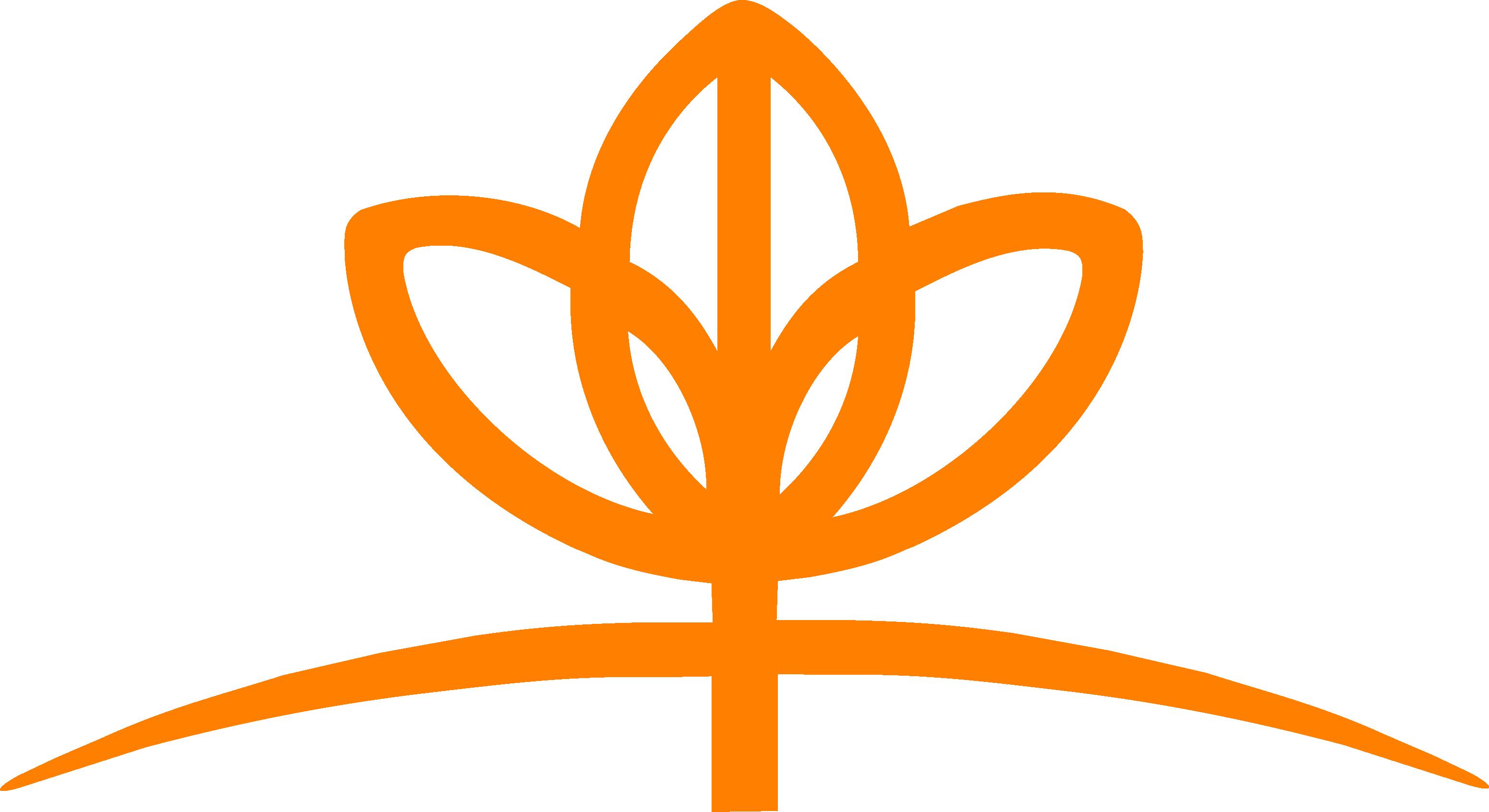 FLOWER MASTER Orange