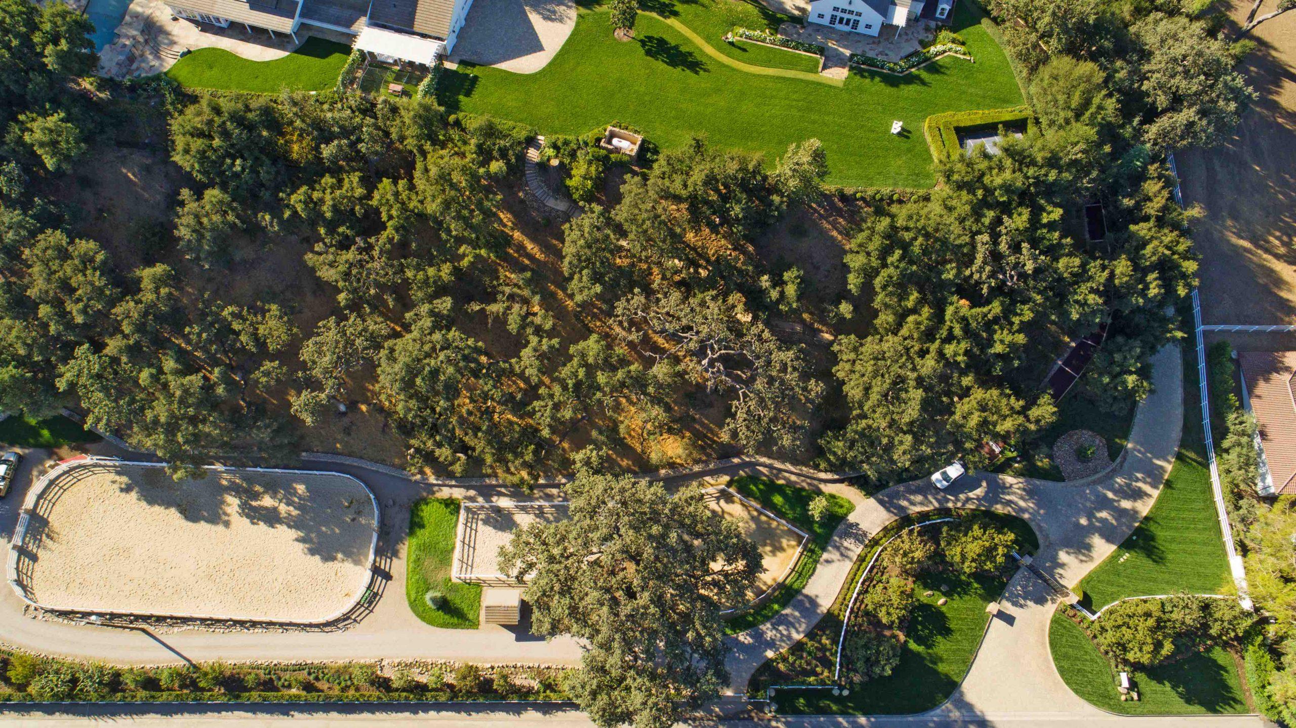 Estate Landscape Management
