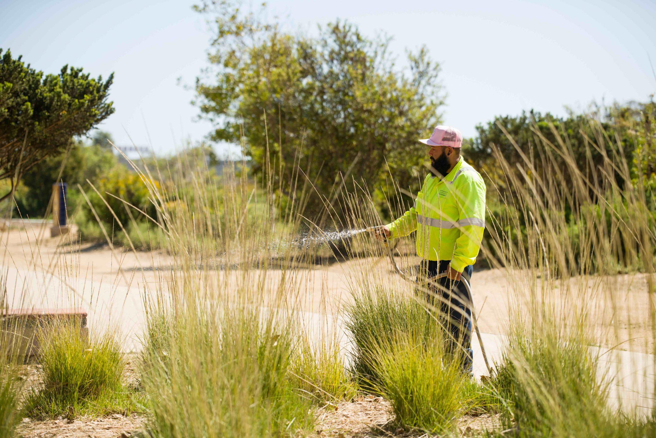 Public works landscaping maintenance